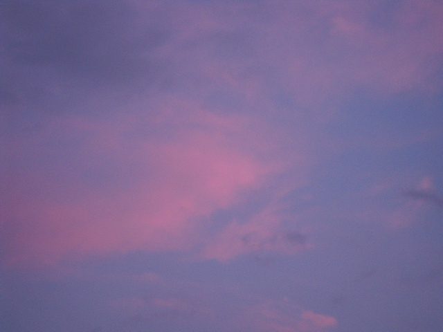 20100710_1