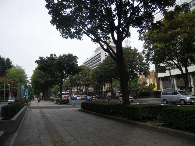 20101012_1