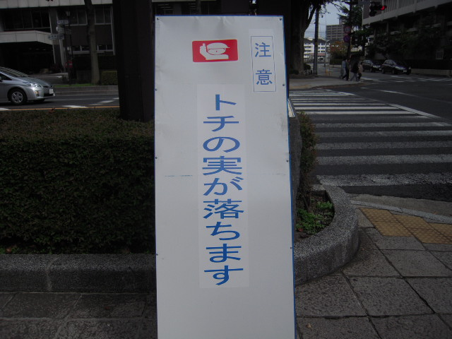 20101012_2