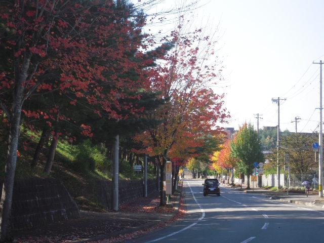 20101023_1